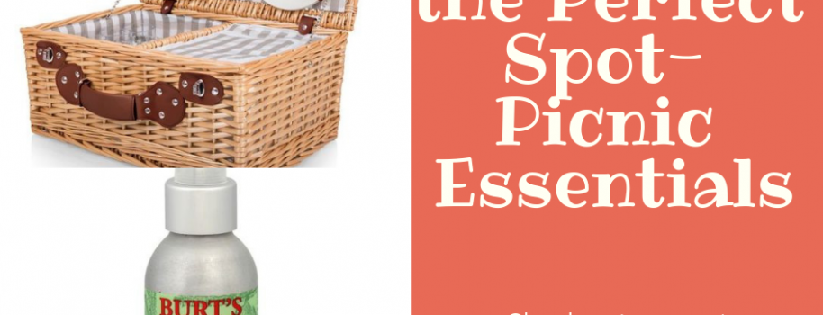 Finding the Perfect Spot- Picnic Essentials