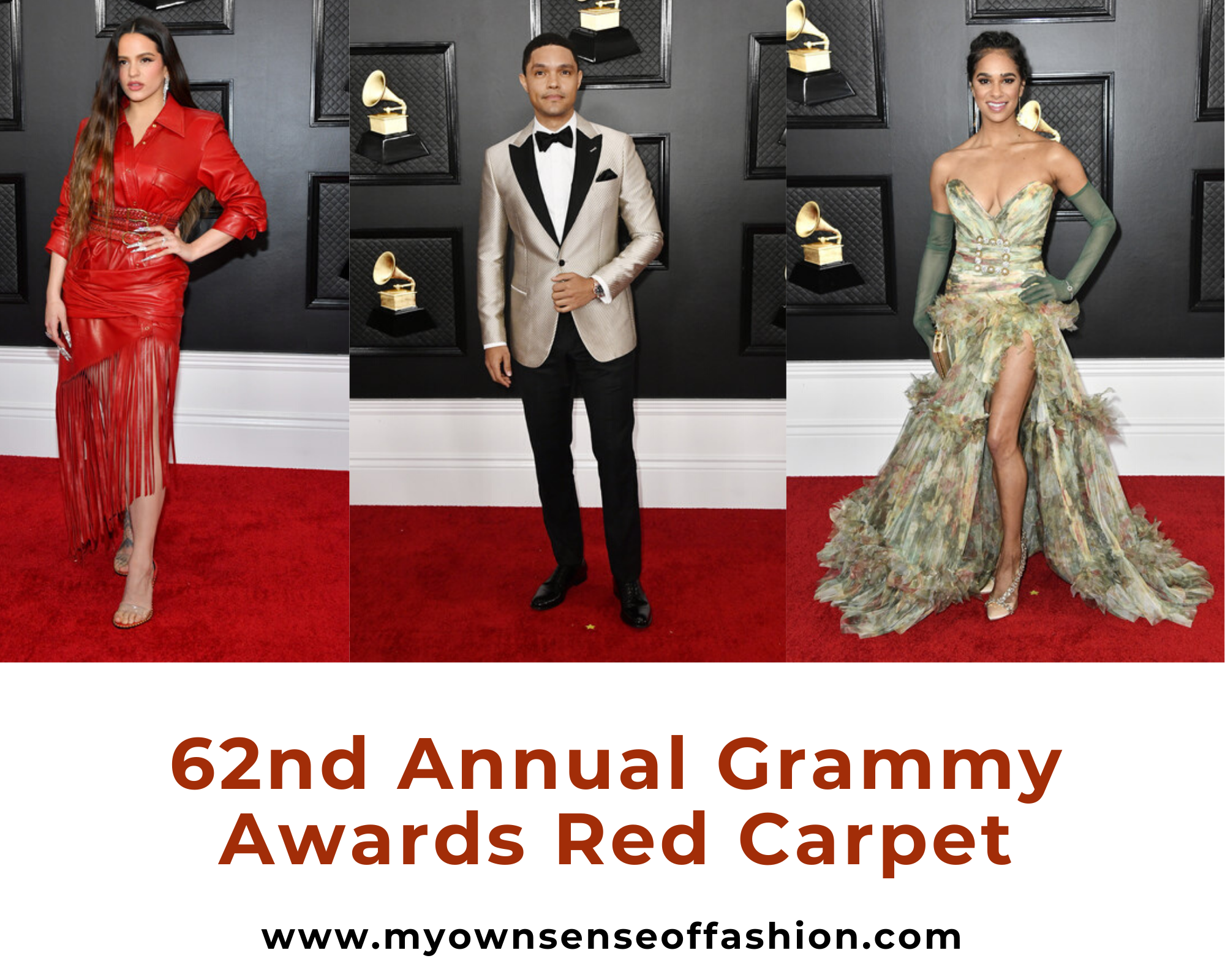 62nd Annual Grammy Red Carpet Recap